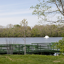The Virginia B. Fairbanks Art & Nature Park: 100 Acres