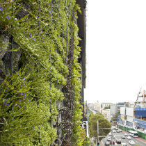 One Central Park Vertical Gardens : Patrick Blanc