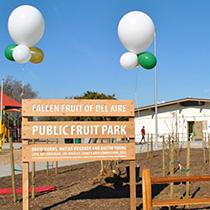 Del Aire Fruit Park : Fallen Fruit