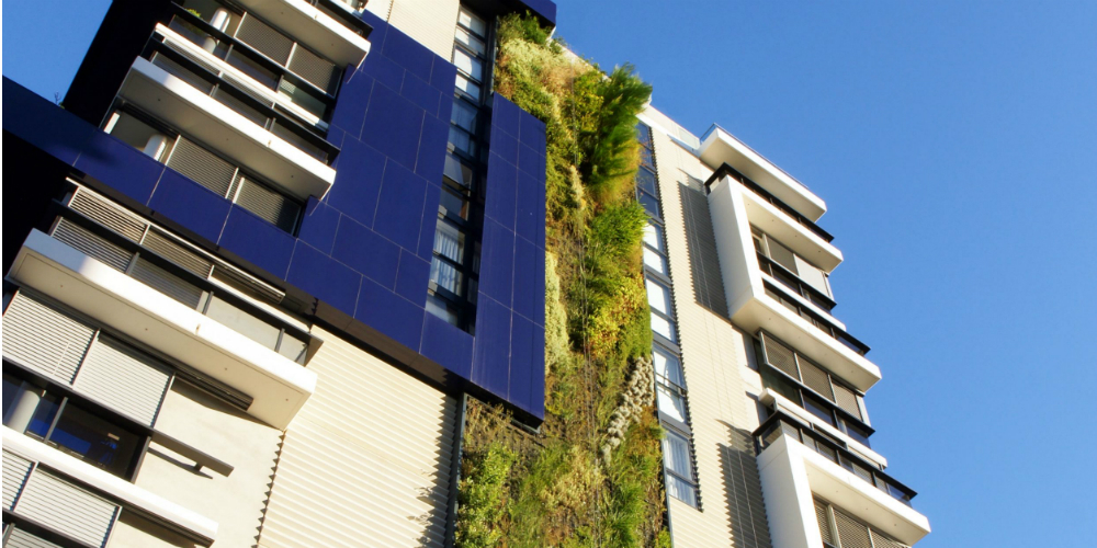 Patrick Blanc, Vertical Garden for Fraser's Property Trio apartment complex, 2009. Located on corner of Booth Street and Pyrmont Bridge Road, Camperdown, Sydney. Image courtesy of Frasers Property Australia.