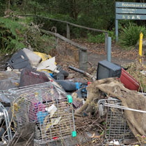 A Line Made By Walking and Assembling Bits and Pieces of the Bodywork of Illegally Dumped Cars Found at the Edge of Roads and Tracks in the Illawarra Escarpment : Brogan Bunt